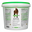 EPIC® Daily Immune Support for Horses
